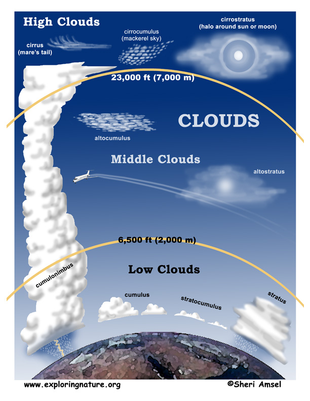Clouds (Basic Readers)