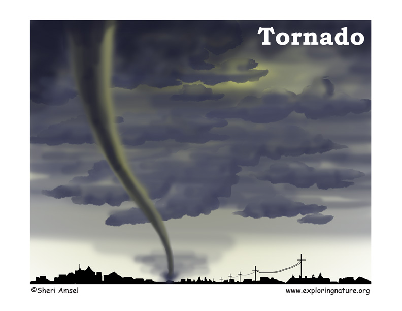 Storms - Tornadoes (Basic Readers)