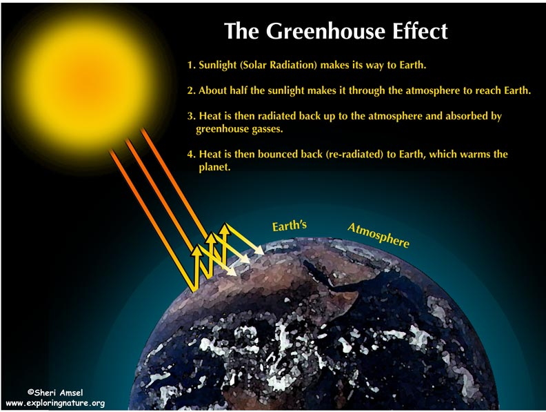the enhanced green house effect essay The greenhouse effect essay - case studies buy best quality custom written the greenhouse effect essay.