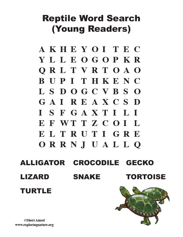 reptile word search  primary