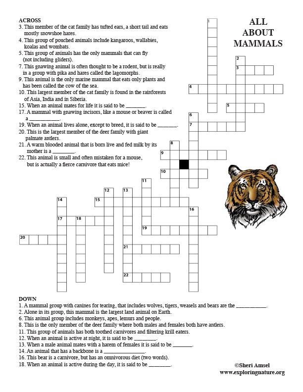 Mammals Crossword Puzzle (Adults)