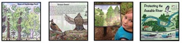 Illustrations for Interpretive Signage, Museum and Nature Center Exhibits
