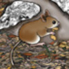 Mouse Den - Hidden Picture