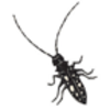 Beetle (Asian Long-horned)