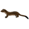 Weasel (Long-tailed)