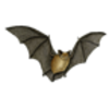 Bat (Little Brown)