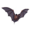 Bat (Mexican Free-tailed or Brazilian Free-tailed)
