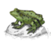 Frog (Green)