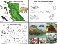 Canada: British Columbia's Animals and Habitats: Mini-Posters, Coloring and Labeling Bundle - Downloadable Only